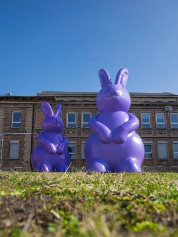 Dmuchane króliki - nietypowe zamówienie indywidualne